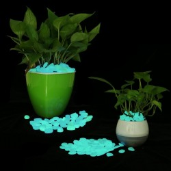 Pietricele fosforescente glow in the dark decorative, translucide care lumineaza aqua