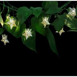 Ghirlanda stelute decorative, 10 LED-uri alb cald, lungime 1.8 metri, IP44
