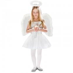 Costum de ingeras pentru...