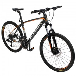 Bicicleta MTB Phoenix, roti...