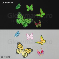 Set 5 stickere fosforescente decorative Fluturasi