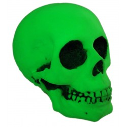 Craniu fosforescent glow in the dark